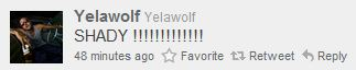 yelawolf-shady