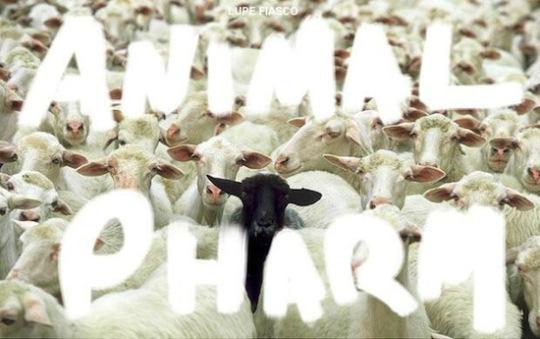 animal-pharm-cover