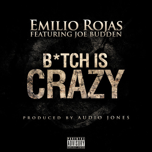 bitch-is-crazy