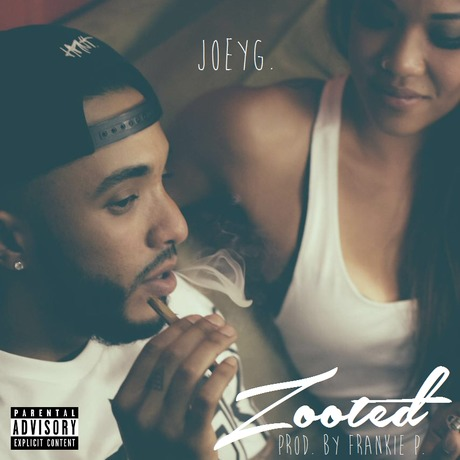 rsz_zooted_cover